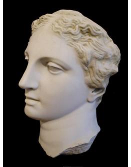Apollo Head