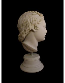 Eros Head